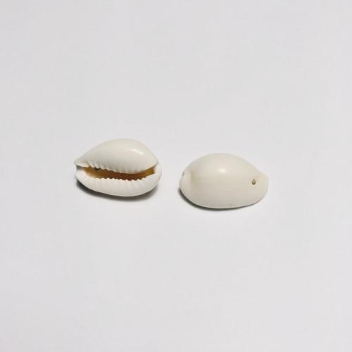Conchas natural